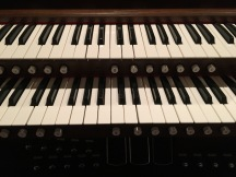 Straight organ picture.JPG