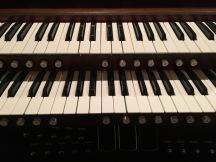 Straight organ picture.JPG